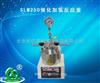 河南促销SLM250催化加氢反应釜