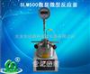 河南厂家直销SLM500数显微型反应釜