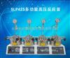 河南直销SLP425多功能高压反应釜