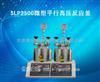 河南定制SLP2500微型平行高压反应釜
