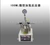 河南供应100ML微型加氢反应器