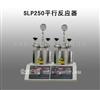 河南优惠促销SLP250平行反应器