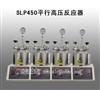 河南生产SLP450平行高压反应器