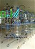 BDEX1~100L昆明BDEX1~100L防爆双层玻璃反应釜