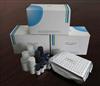 小鼠抗中性粒细胞核周抗体(pANCA)ELISA试剂盒