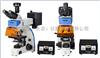 BG500FL北京房山区荧光显微镜BG500FL一级工厂出货价