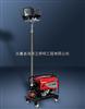 SAW5100-B2000发电*升降工作灯SAW5100-B2000,海洋王-SFW6110发电机应急照明灯