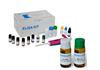 鸡1,3-βD葡葡糖苷酶(1,3-βD-Glu)ELISA试剂盒