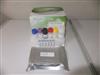 犬胃泌素(GT)ELISA试剂盒