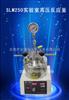 郑州长期供应SLM250实验室高压反应釜