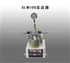 广州批发SLM100反应器
