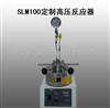 森朗SLM100定制高压反应器