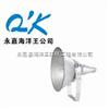 NTC9210-J250 供应海洋王防震型投光灯