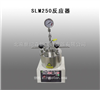 供应SLM250反应器