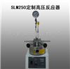SLM250北京定制高压反应器