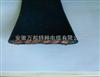 YEBG国标生产、带钢丝抗拉加强型组合扁线 YEBG 24*2.5
