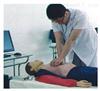 KAH/4500B智能化心肺复苏训练教学系统(半身/全身、网络版)